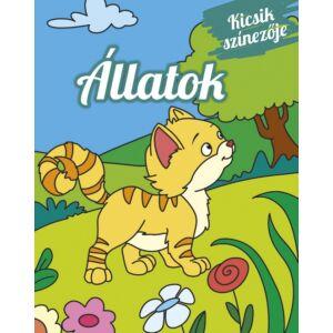 Foglalkoztató füzet kifestő Kicsik színezője - Állatok Napraforgó könyvek