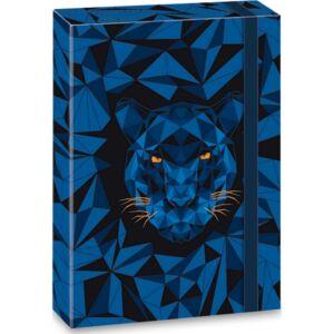 Füzetbox A4 Ars Una Black Panther (5082) 21