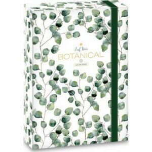 Füzetbox A5 Leaf 20' Botanic Leaf - Ars Una iskolaszezonos füzet, könyv tárolók