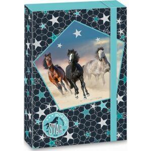 Füzetbox A4 Lovas 19' Morning Star - lovas - Ars Una iskolaszezonos füzet, könyv tárolók