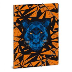 Gumis mappa A4 párducos Black Panther 21' gumis dosszié kollekció
