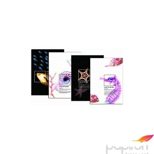 Bemutató mappa A4 OptiMax-rey 10lapos vegyes mintával Papiron