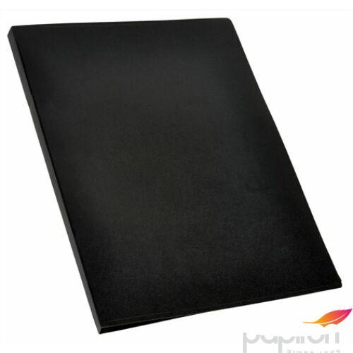 Bemutatómappa A3 30zseb fekete Viquel Standard Iratrendezés VIQUEL 546005-04