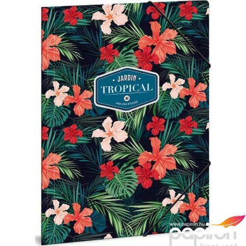 Gumis mappa A4 virágos Tropical wildblume - virágos 19' Ars Una gumis dosszié kollekció