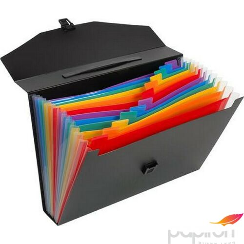 Harmónika irattáska VIQUEL Rainbow Class 12rekesz PP fekete VIQUEL 117287-03
